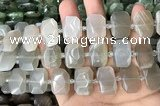 CNG7881 13*18mm - 15*25mm faceted freeform moonstone beads