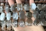 CNG7883 13*18mm - 15*25mm faceted freeform moonstone beads