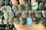 CNG7887 13*18mm - 15*25mm faceted freeform labradorite beads