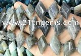 CNG8646 13*20mm - 15*25mm faceted freeform labradorite beads