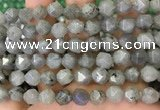 CNG8717 15.5 inches 10mm faceted nuggets labradorite gemstone beads