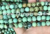CNT404 15.5 inches 8mm round natural turquoise beads wholesale