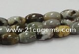 COS30 15.5 inches 8*12mm rice ocean stone beads wholesale