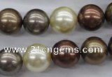 CSB1133 15.5 inches 14mm round mixed color shell pearl beads