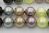 CSB364 15.5 inches 12mm round mixed color shell pearl beads