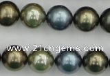 CSB384 15.5 inches 14mm round mixed color shell pearl beads