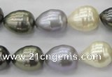 CSB552 15.5 inches 12*15mm whorl teardrop mixed color shell pearl beads