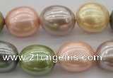 CSB679 15.5 inches 16*19mm oval mixed color shell pearl beads