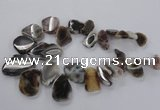 CTD1618 Top drilled 15*25mm - 30*45mm freeform botswana agate beads