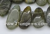 CTD3531 Top drilled 10*22mm - 15*45mm freeform labradorite beads