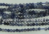 CTG115 15.5 inches 2mm round tiny sodalite gemstone beads wholesale
