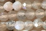 CTG1207 15.5 inches 4mm faceted round tiny rainbow moonstone beads