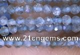 CTG1416 15.5 inches 2mm faceted round apatite beads wholesale