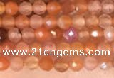CTG2142 15 inches 2mm,3mm faceted round golden sunstone beads