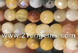 CTG2219 15 inches 2mm,3mm faceted round crazy lace agate beads