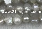 FWP232 14.5 inches 3mm - 4mm baroque grey freshwater pearl strands